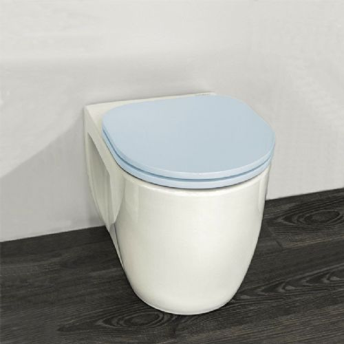 H&L Junior Series Childrens Toilet with Blue Seat